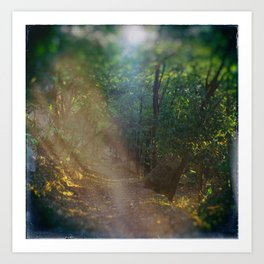 My Secluded Trail Art Print