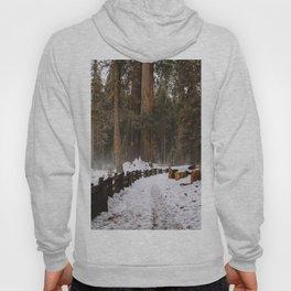Sequoia Snow Trails Hoody
