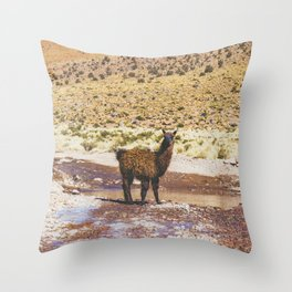 Llama Crossing in Bolivia Throw Pillow
