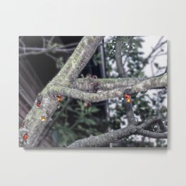 Bleeding Tree Metal Print