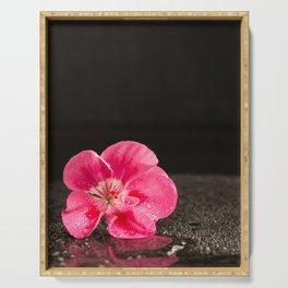 Geranium flower - shining in the dark Serving Tray