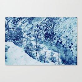 Blue Fury Canvas Print