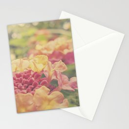 Daydreams of Summers Past Stationery Cards
