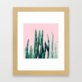 Green Cactus on Pink Framed Art Print
