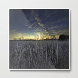 At Dawn in the Grass Metal Print
