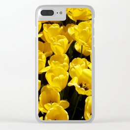 Yellow Sunlit Tulips Clear iPhone Case