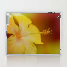 An Afterthought Laptop & iPad Skin