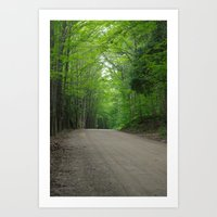 Old Forest Road Art Print