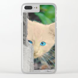 Curious Kitten with Aqua Eyes Clear iPhone Case