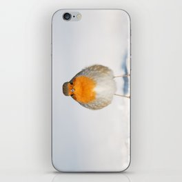 Angry Bird .:. Robin in the Snow iPhone Skin