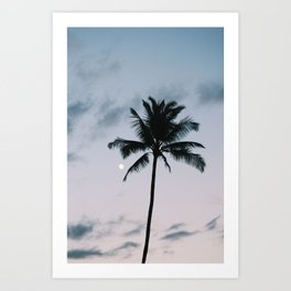 palm + moon Art Print