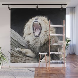 Tired LION Wall Mural