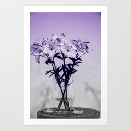 Lily Study 01 Art Print