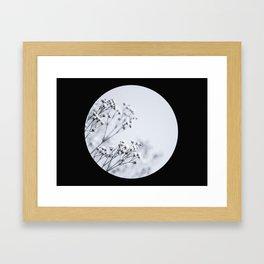 Silver Kiss III Framed Art Print