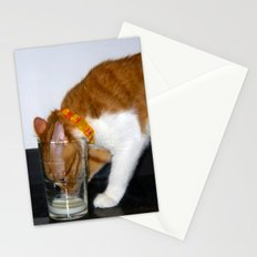 Funny Cat Drinking from Glass Stationery Cards