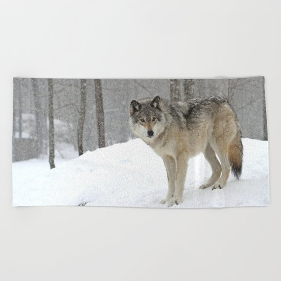 A lone wolf Beach Towel