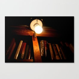 Light in the Jungle Canvas Print