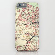 Pink Dogwood Tree Branches in Spring iPhone 6s Slim Case