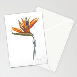 Bird of Paradise 01 Botanical Flower Stationery Cards