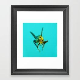 Bugged #09 Framed Art Print