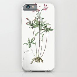 Lily of the Incas  from Les liliacees (1805) by Pierre-Joseph Redoute iPhone Case