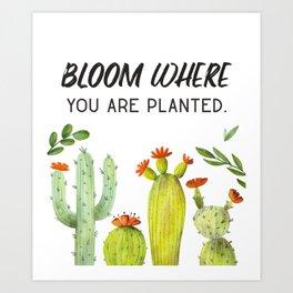 Cactus Flower Art Motivational Quotes Art Print