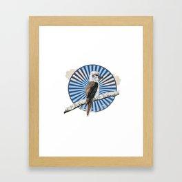 Kookaburra Framed Art Print