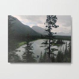 Moose, British Columbia, Canada Metal Print