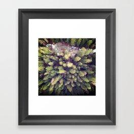 Aerial Wilderness Framed Art Print