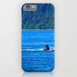 Whale Watching iPhone Case
