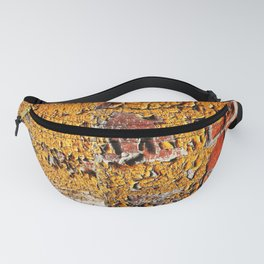 Orange Peel Fanny Pack