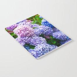 Purple Hydrangeas Notebook