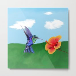 The very hungry hummingbird Metal Print