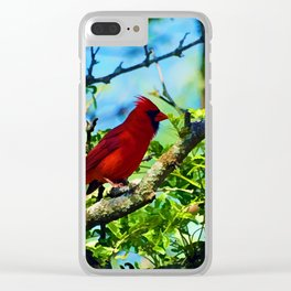 Red Cardinal Clear iPhone Case