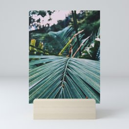 Palm leaves in a cold place Mini Art Print