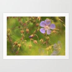 Wild Geranium 3900 Art Print