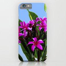 Pink Plumeria iPhone 6s Slim Case