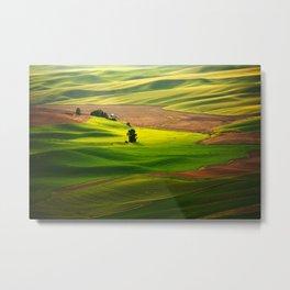 Silky Green Metal Print