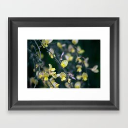 Yellow Blur Framed Art Print