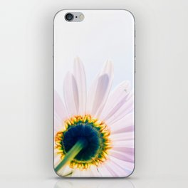 Blooming Daisy iPhone Skin