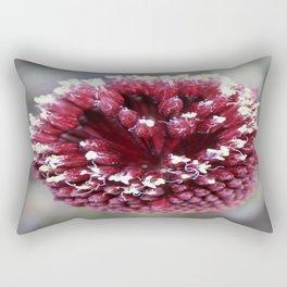 Macro of Round-Headed Leek Flower Allium Sphaerocephalon Rectangular Pillow