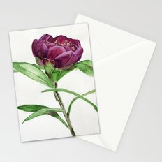 Night Rider Stationery Cards
