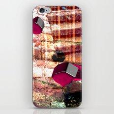 Baxotobami iPhone & iPod Skin