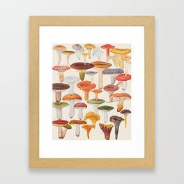 Les Champignons Mushrooms Framed Art Print