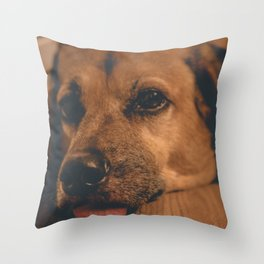 Sad Princess Dog Throw Pillow