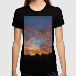 Devonian Drama T-shirt