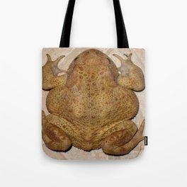Overhead Anatomy Of a Bufo Bufo Toad Tote Bag