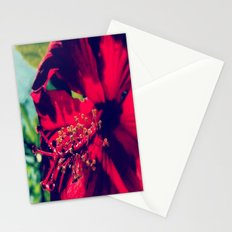 Saimaa Stationery Cards