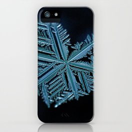 Heart of Winter iPhone Case