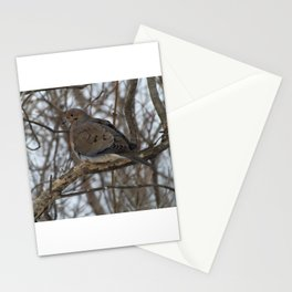 Mourning Dove perched Stationery Cards